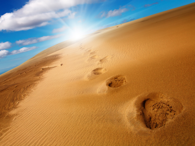 footprints in the desert 2