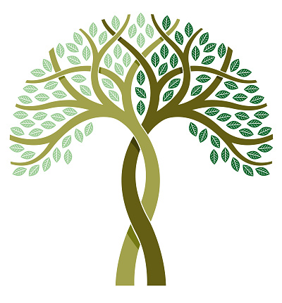 A simple graphic entwined tree illustration